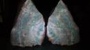 Opal in Agate
